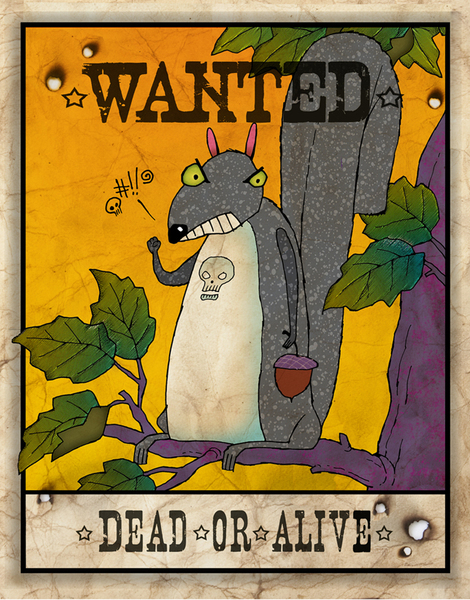 Wanted Squirrel